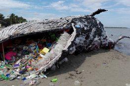 Inquinamento dalla plastica
