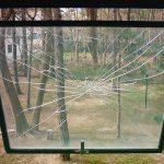 scuola finestra con pellicola vetro antischeggia